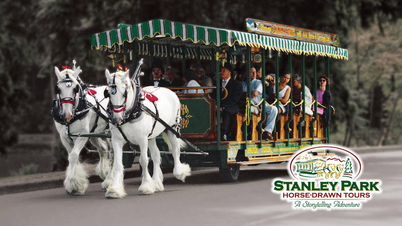 Save up to 25% on Horse & Carriage Rides in Stanley Park