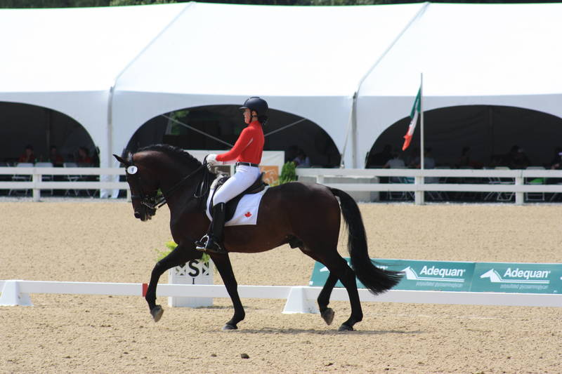 Competition at North American Championships for Young Riders