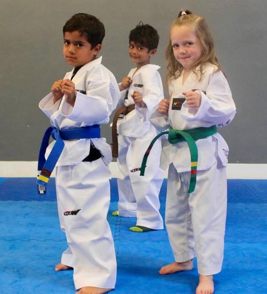 Free trial lesson! Waterloo City Martial Arts Academies 2
