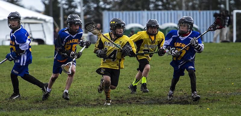 Hamilton Boy's Field Lacrosse