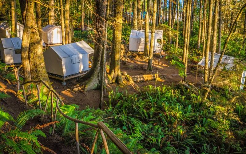 Stay under the temperate rainforest canopy, along the ocean shore in canvas cabin tents